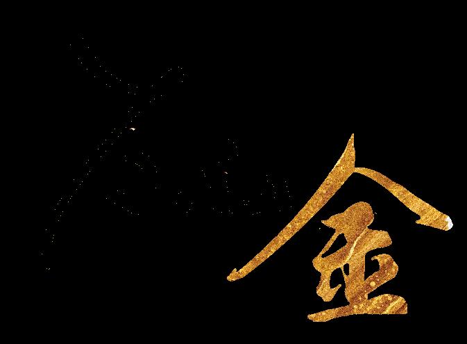 Yana Jin Китайски